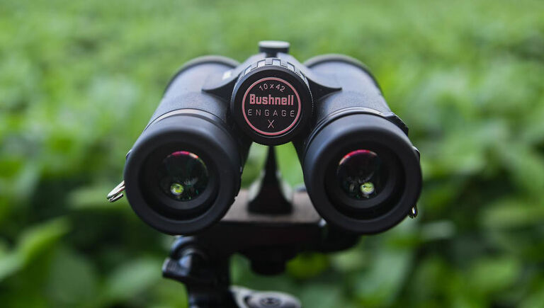 Bushnell Engage DX Binoculars mounted on a stand