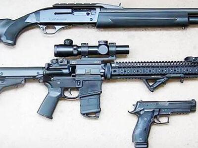 Pistol vs. Rifle vs. Shotgun: What's the Difference?