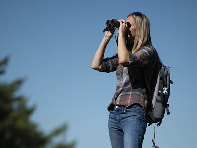 Binocular Field of View and What It Means to You