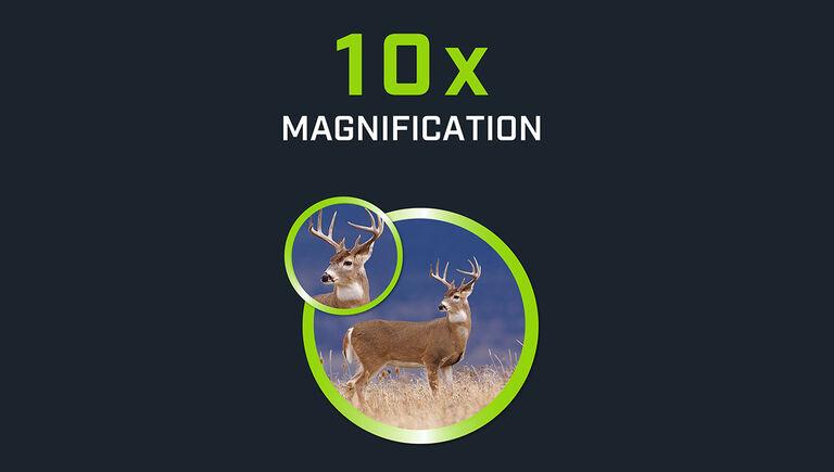 10 times magnification comparison