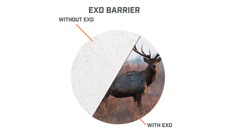 View through the lens with and without EXO Barrier