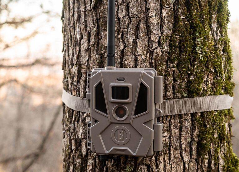 Picture of Cellucore 20 Trail Camera