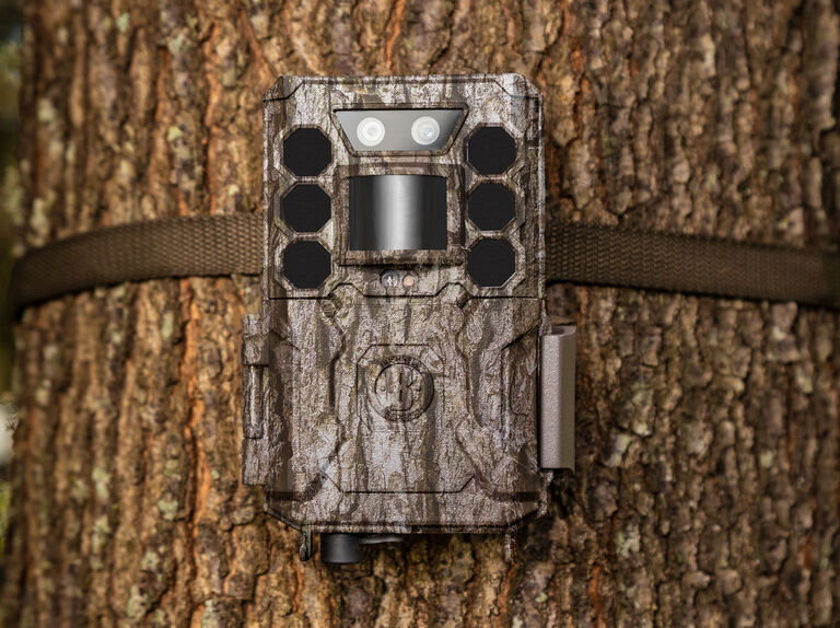 Bushnell Trail Camera Collections