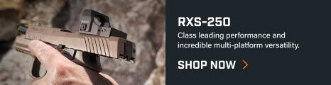 RXS-250 Reflex Sight mounted on pistol