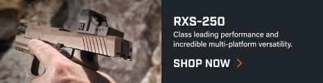 RXS-250 Reflex Sight mounted on pistol
