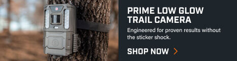Bushnell Prime Low Glow Trail Camera setup on a tree
