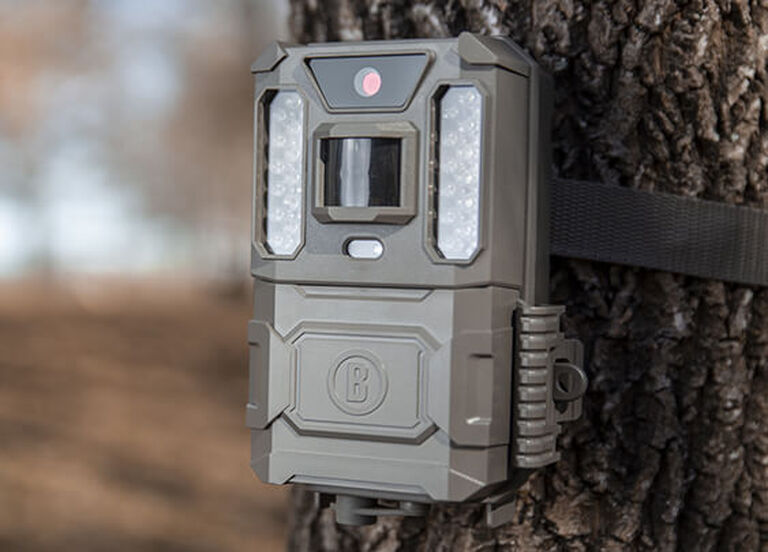 Trail Cameras Buyer's Guide