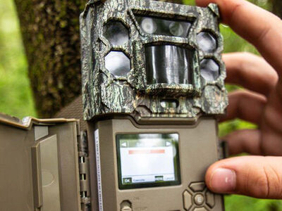 How a Good Trail Camera Can Improve Your Hunting Success